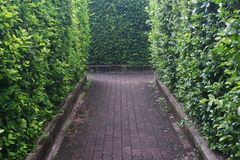 walkway Royaltyfri Foto
