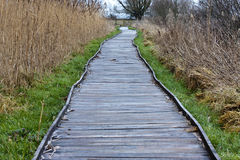Walkway. Wooden walkway to the bird viewing hide Stock Photo