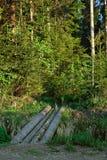 Walkway across ravine. Royalty Free Stock Photography
