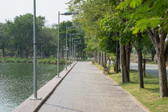 Walkway in alley garden. Avenue of trees in the park Royalty Free Stock Image