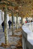 Walkway along the bank of the river Ljubljanica, Ljubljana, Slovenia. Falling leaves in autumn Royalty Free Stock Image