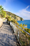 The walkway along coastline Stock Images