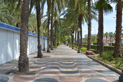 A Walkway Along Alicante Harbour Lined With Palm Trees Stock Photography