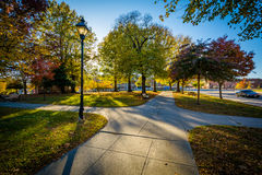 Walkway and autumn color at Franklin Square Park, in Baltimore, Royalty Free Stock Photo