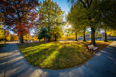 Walkway and autumn color at Franklin Square Park, in Baltimore,. Maryland stock image