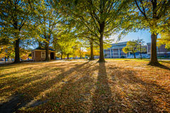 Walkway and autumn color at Franklin Square Park, in Baltimore,. Maryland royalty free stock photography