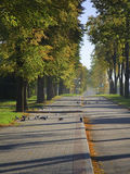 Walkway in the autumnal city Stock Photo
