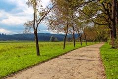 Walkway. Stock Image