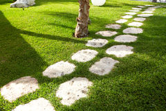 Walkway in a beautiful tropical garden. Nature background Royalty Free Stock Images