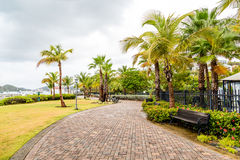 Walkway and Bench Among Palm Trees Royalty Free Stock Photos
