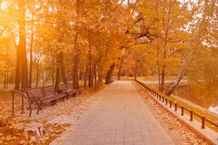 Walkway and benches in the city park. Royalty Free Stock Photo