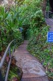 Walkway Botanical Gardens. Walking path Wahiawa Botanical Gardens Stock Photo