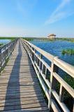 Walkway bridge on the lake Stock Images