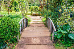 Walkway bridge sylvan Royalty Free Stock Images