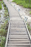 Walkway bridge to mountain Stock Image