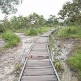 Walkway bridge to mountain Stock Photo