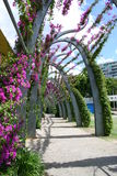Walkway through Brisbane's Southbank. Beautiful modern architecture and floral display in the heart of Brisbane Royalty Free Stock Image