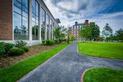 Walkway and buildings at Harvard Business School, in Boston, Mas Royalty Free Stock Images