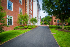 Walkway and buildings at Harvard Business School, in Boston, Mas Royalty Free Stock Photography