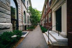 Walkway and buildings at Harvard University, in Cambridge, Massa Stock Photos