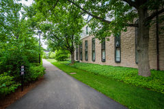 Walkway and buildings at Harvard University, in Cambridge, Massa Royalty Free Stock Image
