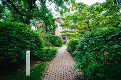 Walkway and buildings at Harvard University, in Cambridge, Massa Royalty Free Stock Photo