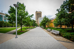 Walkway and buildings at the Massachusetts Institute of Technolo Royalty Free Stock Photography