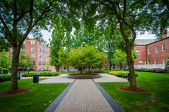 Walkway and buildings at the Massachusetts Institute of Technolo Stock Photography