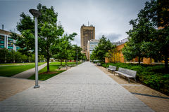 Walkway and buildings at the Massachusetts Institute of Technolo Stock Image