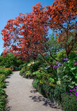 Walkway at Butchart Gardens , Central Saanish, Canada Stock Photography