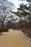 The walkway at Changgyeong palace area. The walkway inside seasoning palace area in Seoul, South Korea Stock Photo