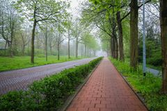Walkway in the city cover with fog. Fog covering over tree canopy in the park of Den Haag city ,Netherland, at morningtime but nobody on the street Royalty Free Stock Photography