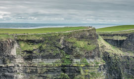 Walkway on the Cliffs of Moher Royalty Free Stock Image