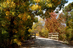 A Walkway in the Country Stock Photography