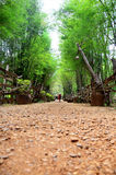 Walkway crushed stone with bamboo cave at the National Ethnic Cu Royalty Free Stock Photography