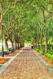 Walkway in downtown Charleston, South Carolina stock image