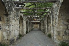walkway för alamo aftonglöd royaltyfri foto