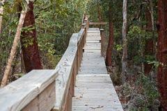 walkway för djungelpapegojapreserve Arkivbild