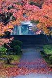 walkway för falllövverktempel Royaltyfria Foton