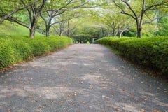 walkway för tappning för stil för bildparkfoto Arkivfoton