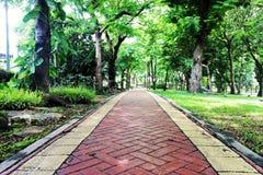 walkway för tappning för stil för bildparkfoto royaltyfria foton