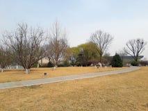 walkway för tappning för stil för bildparkfoto porslin tianjin Arkivbild