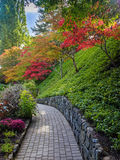 Walkway in a fall park Royalty Free Stock Images