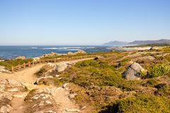 Walkway with fence along Atlantic Ocean coast with mountain on background. Portugal nature. Moss and grass on rocks at seaside. Wide beach with waves and path stock photo