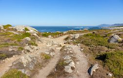 Walkway with fence along Atlantic Ocean coast with mountain on background. Portugal nature. Moss and grass on rocks at seaside. Wide beach with waves and path royalty free stock images