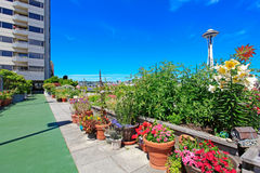 Walkway with flowers alongside. Residential building in downtown Stock Photography