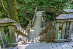 Walkway Through The Forest. A wooden walking structure gives easy access to a trail at Dash Point State Park in Washington State stock photos