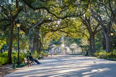 Walkway and fountain, at Forsyth Park, in Savannah, Georgia royalty free stock images