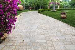 Walkway on garden. Stock Image