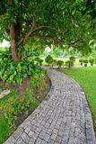 Walkway in garden Royalty Free Stock Image